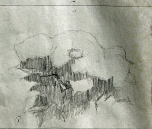 IMG_2286 WIP Hydrangea Update 1