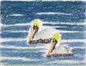 img_2387-wip-pelicans-update-1
