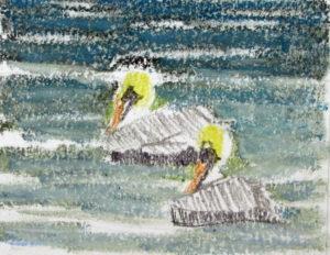 img_2388-wip-pelicans-update-1