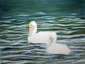 img_2402-wip-pelicans-update-2d