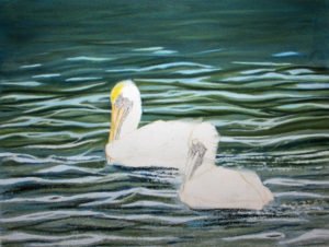 img_2408-wip-pelicans-update-2e